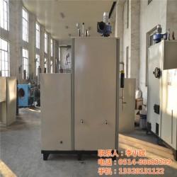 锅炉制造商|锅炉|华飞新能源(查看)