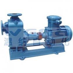 100CYZ-63油泵