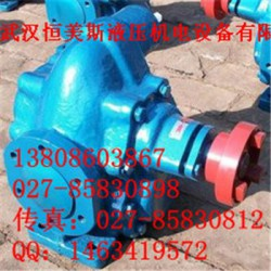 武汉恒美不二越马达SS-G01-E3X-FR-D2-31