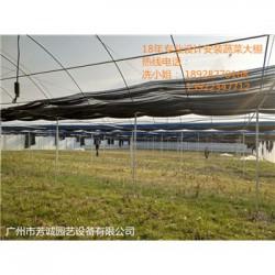 供应-阳春温室大棚建造水帘风机大棚