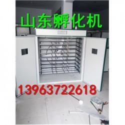 苍溪县鸡苗孵化机多少钱