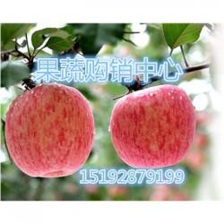 今 日 平安夜红富士苹果条红价格会降价吗?