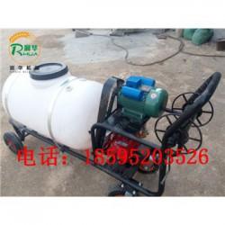 园林机动喷雾器 家用电动喷雾器 农用打药机