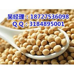 厂家收购玉米大豆,民发养殖,玉米大豆