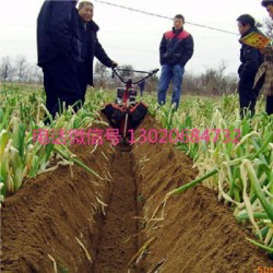 河北热销农用开沟机 小型施肥开沟机 多功能