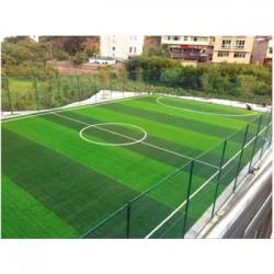 临沧足球场草坪