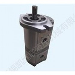 CBK1016F/08F-A3FR,双联齿轮泵