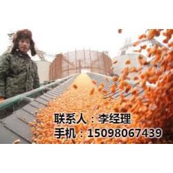 黄石玉米_颜杨水产_今日玉米价格