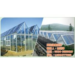 泰安太阳能温室,鑫和温室园艺,太阳能温室大