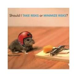 提供科思康环境工程优质杨浦灭鼠,上海杨浦