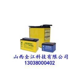 免维护铅酸蓄电池厂家_太原免维护铅酸蓄电