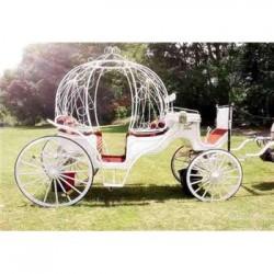 在哪能租到皇家马车公园开业马车庆典马车包