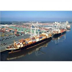 中美海运到门 中美海运拼箱