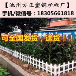 池州石台县丁香镇pvc绿化护栏_池州方正护栏