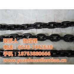 咸阳G80起重链条,泰安市鑫洲机械,专业生产G