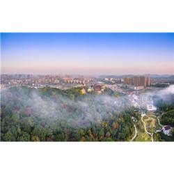 南京建设项目使用林地可行性报告编制规范