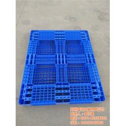 甘肃省塑料卡板 搬运用塑料卡板 盛达(优质