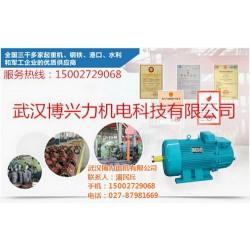 YZD双速电机样本,武汉博兴力机电,YZD双速电